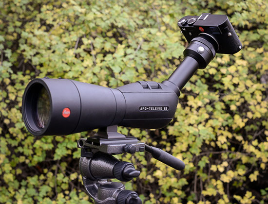 Digiscoping-with-the-Leica-M-240-and-Leica-spotting-scope-APO-Televid-82
