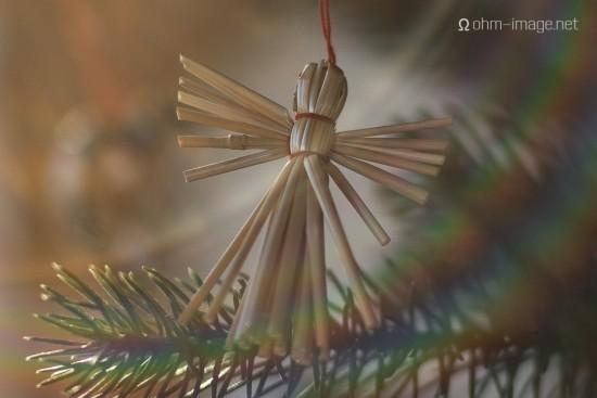 Bresson V1 Christmas tree - 50Summilux 04 MSO
