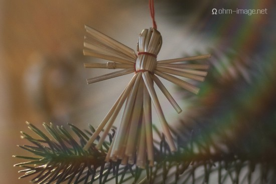 Bresson V1 Christmas tree - 50Summilux 05 EVF