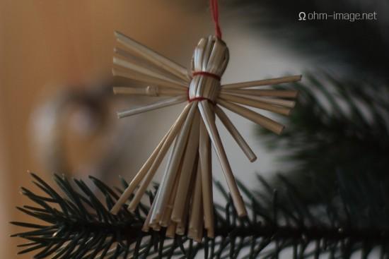 Bresson V1 Christmas tree - 90Summicron 03 Leica