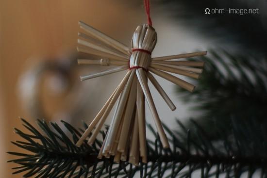 Bresson V1 Christmas tree - 90Summicron 04 MSO