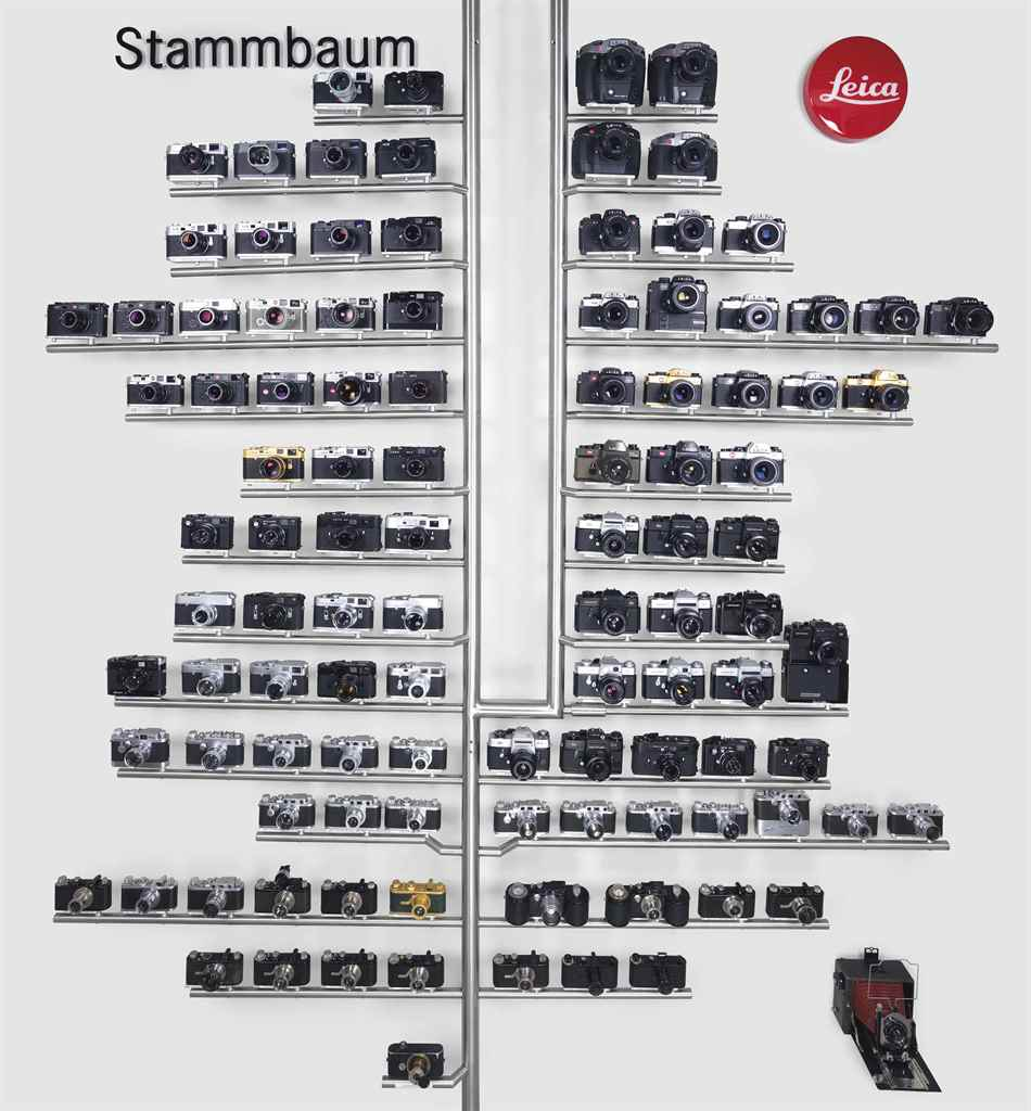 Leica Family Tree Stammbaum for sale at Christies